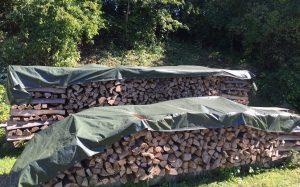 brennholz fellbach waiblingen